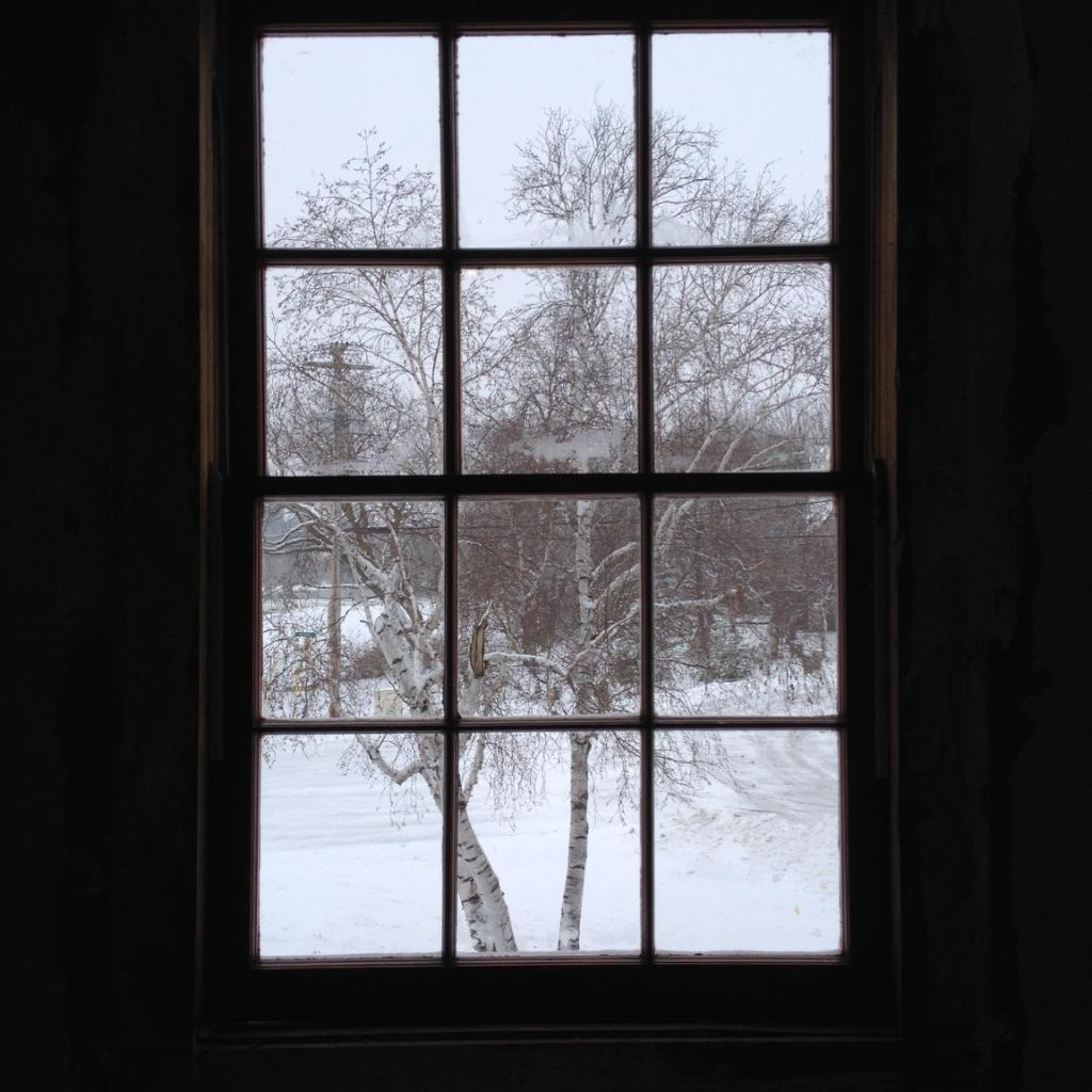 View Of Snow Out LC House Window